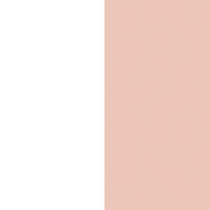 white/petal rose